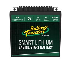 Deltran Lithium Motorcycle Battery